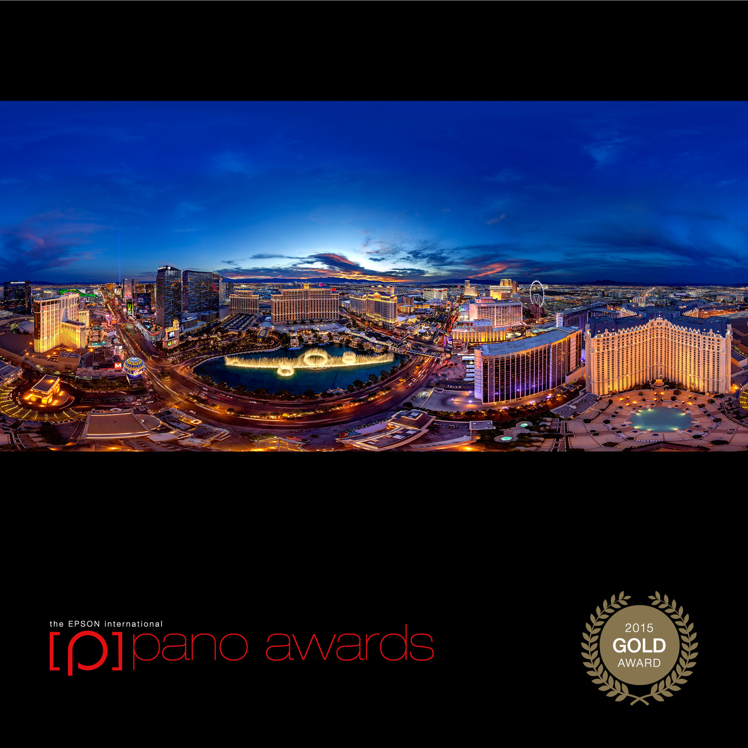 gold medal on epson pano awards
